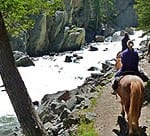 horseback-rides