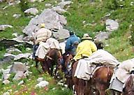 mountana-pack-trips